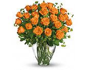 Orlando Flowers - 24 ORANGE ROSES - Colonial Florist