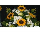 Mixed Spring with Sunflower Alter Arrangement in Mililani Town, Hawaii, Mililani Town Florist