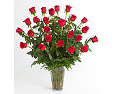 2 Dozen Red Roses Arranged in Little Rock AR, Tipton & Hurst, Inc.