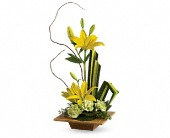 Teleflora's Bamboo Artistry in Starke FL, All Things Possible Flowers, Occasions & More Inc