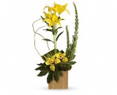 Teleflora's Bamboo Tropics in Perth ON, Kellys Flowers & Gift Boutique