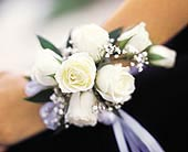 7 White Mini Roses Wristlet in Rocky Mount NC, Flowers and Gifts of Rocky Mount Inc.