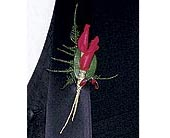 Red Rose Petals Boutonniere in Rocky Mount NC, Flowers and Gifts of Rocky Mount Inc.