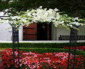 White Arch Decoration in Campbell, California, Jeannettes Flowers