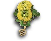 Chartreuse Chrysanthemum Boutonniere in Rocky Mount NC, Flowers and Gifts of Rocky Mount Inc.