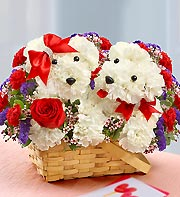 Lucky in Love in Chambersburg PA, All Occasion Florist
