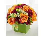 Happy Birthday Bouquet FTD Green Ceramic in Richmond BC, Terra Plants & Flowers