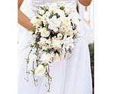 White Cascade Bridal Bouquet in Elkland, Pennsylvania, The Rainbow Rose