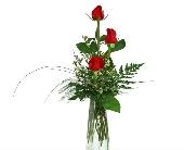 Three Roses in a Budvase in Canton, Pennsylvania, Stulls Flowers