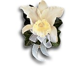 Japhet Orchid Corsage in Palm Springs CA, Palm Springs Florist, Inc.