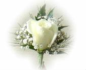 White Boutonniere in Sanborn, New York, Treichler's Florist