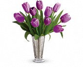 Tantalizing Tulips Bouquet by Teleflora in Show Low AZ, The Morning Rose
