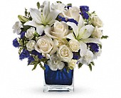 Teleflora's Sapphire Skies Bouquet in DeKalb, Illinois, Glidden Campus Florist & Greenhouse