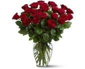 Two Dozen Red Roses in Greenwich CT, Greenwich Florist