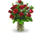 Premium Roses - Choose Her Favorite Color in Cleves OH, Nature Nook Floral Center