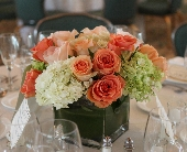 Heavenly Peach in Mamaroneck NY, Arcadia Floral Co.