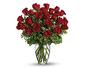 2 Dozen Beautiful Roses in Greensboro NC, Send Your Love Florist & Gifts