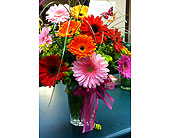 Gerberas-a-Plenty in Visalia CA, Flowers by Peter Perkens Flowers Inc.