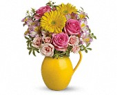 Teleflora's Sunny Day Pitcher Of Charm in Rush NY, Chase's Greenhouse