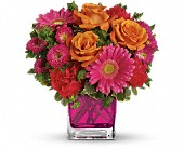 Teleflora's Turn Up The Pink Bouquet in Campbell CA, Rosies & Posies