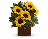 You're Golden Bouquet by Teleflora in Harlan KY, Coming Up Roses