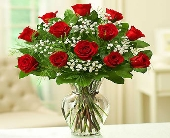 1 DOZEN RED ROSES W/BABY'S BREATH in Los Angeles CA, 1-800 Flowers Conroys