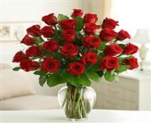 2 Dozen Red Roses in Los Angeles CA, 1-800 Flowers Conroys