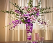 Orchid Splendor in Mesa, Arizona, Red Mountain Florist, Inc.