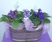 VIOLET GARDEN in Knoxville TN, Crouch Florist
