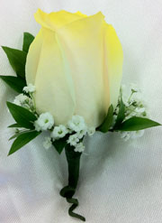YELLOW TIPPED WHITE ROSE BOUTONNIERE in Ossining NY, Rubrums Florist Ltd.