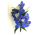 Blue Delphinium Corsage in Raleigh NC, Gingerbread House Florist - Raleigh NC