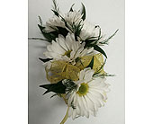 White Daisy Corsage in Raleigh NC, Gingerbread House Florist - Raleigh NC