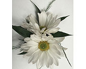 White Daisy Bout. in Raleigh NC, Gingerbread House Florist - Raleigh NC