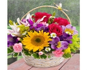 Butterfly Basket in East Syracuse NY, Whistlestop Florist Inc