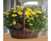 Yellow Trio Basket in East Syracuse NY, Whistlestop Florist Inc