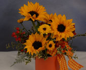 Paint A Sunny Day in Cape Girardeau MO, Arrangements By Joyce