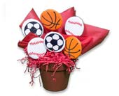 Sports Lover Cookie Bouquet in Nationwide MI, Wesley Berry Florist, Inc.