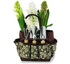 Basic Garden Kit in Nationwide MI, Wesley Berry Florist, Inc.
