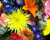 Bright and Colorful Vase Arrangement in Manalapan NJ, Rosie Posies