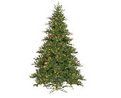 12 '' Camdon Fir in San Antonio TX, Best Wholesale Christmas Co