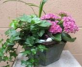 SPRING GARDEN in Napa, California, Garaventa Florist