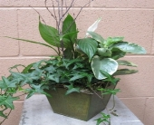 SIMPLE AND SWEET PLANTER in Napa CA, Garaventa Florist
