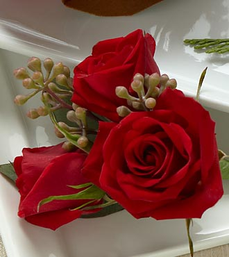 The FTD� Red Spray Rose Boutonniere ( SMALL ROSES) in Highlands Ranch CO, TD Florist Designs