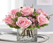 SWEET SENTIMENTS ROSES in Vienna VA, Vienna Florist & Gifts
