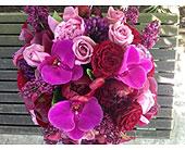 Seattle Flowers - Jewel Tone Cube Bouquet - City Flowers, Inc.