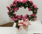 Azalea Hoop in Nashville TN, Emma's Flowers & Gifts, Inc.