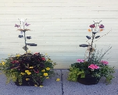 Patio Pots in White Lake MI, Flowers of the Lakes, Inc.