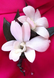 DBLE WH. DENDROBIAN ORCHID BOUTONNIERE in Ossining NY, Rubrums Florist Ltd.