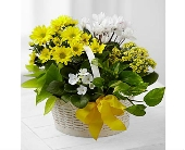 A Bit of Sunshine� Basket by FTD� in San Clemente CA, Beach City Florist
