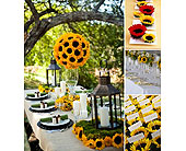 Sunflower Surprise! in San Antonio, Texas, Blooming Creations Florist
